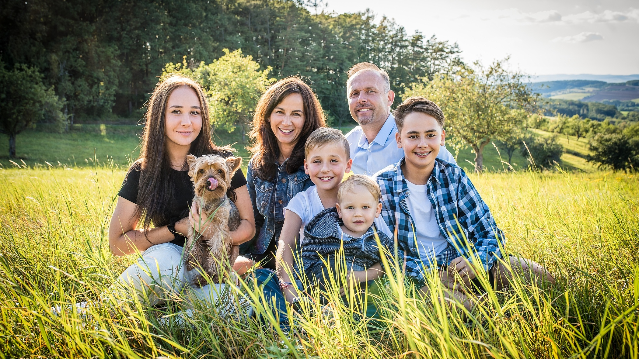 Limited-Scope-Representation-in-California-Family-Law